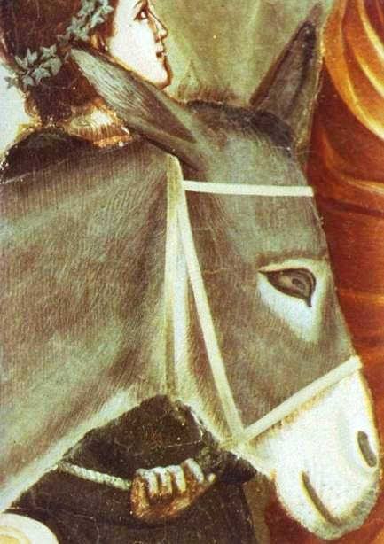 Giotto's good-humoured donkey, detail from The Flight into Egypt, see end of page